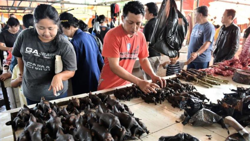 Çin hayvan pazarlarını yeniden kuruyor!