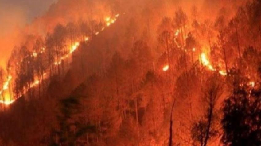 Trodos'taki Platres köyünde yangın çıktı