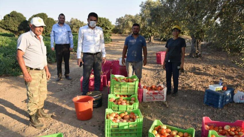 Bakan Oğuz, domates üreticilerini ziyaret etti